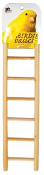 9-rung Birdie Basics Small Bird Ladder