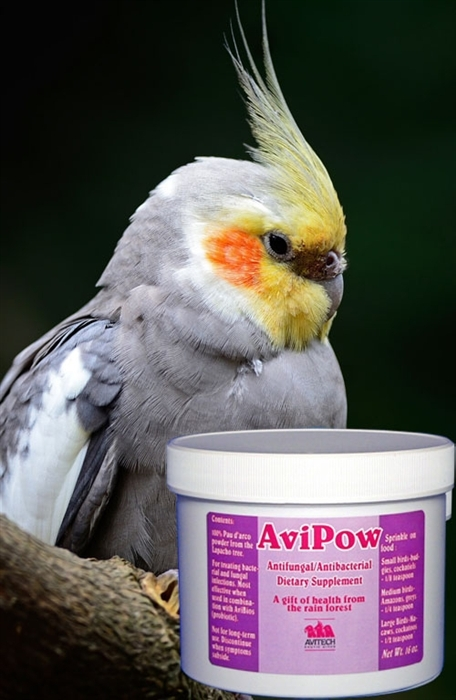AviPow - Anti-Fungal. Anti-Bacterial Supplement - 4oz