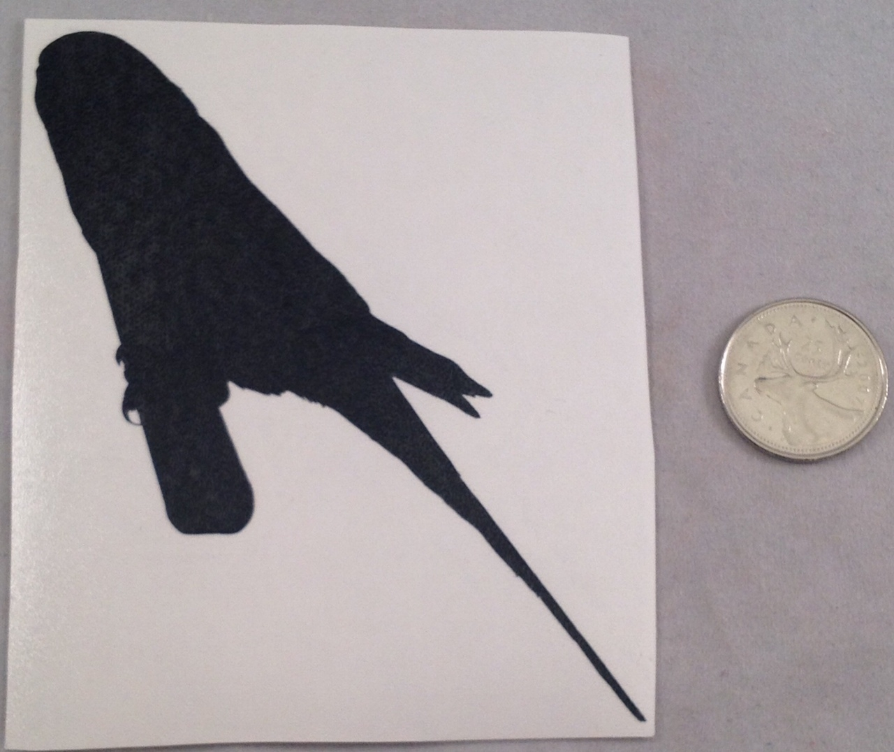 Budgie Silhouette Decal