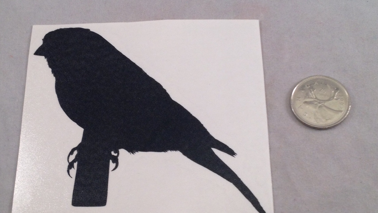 Canary Silhouette Decal