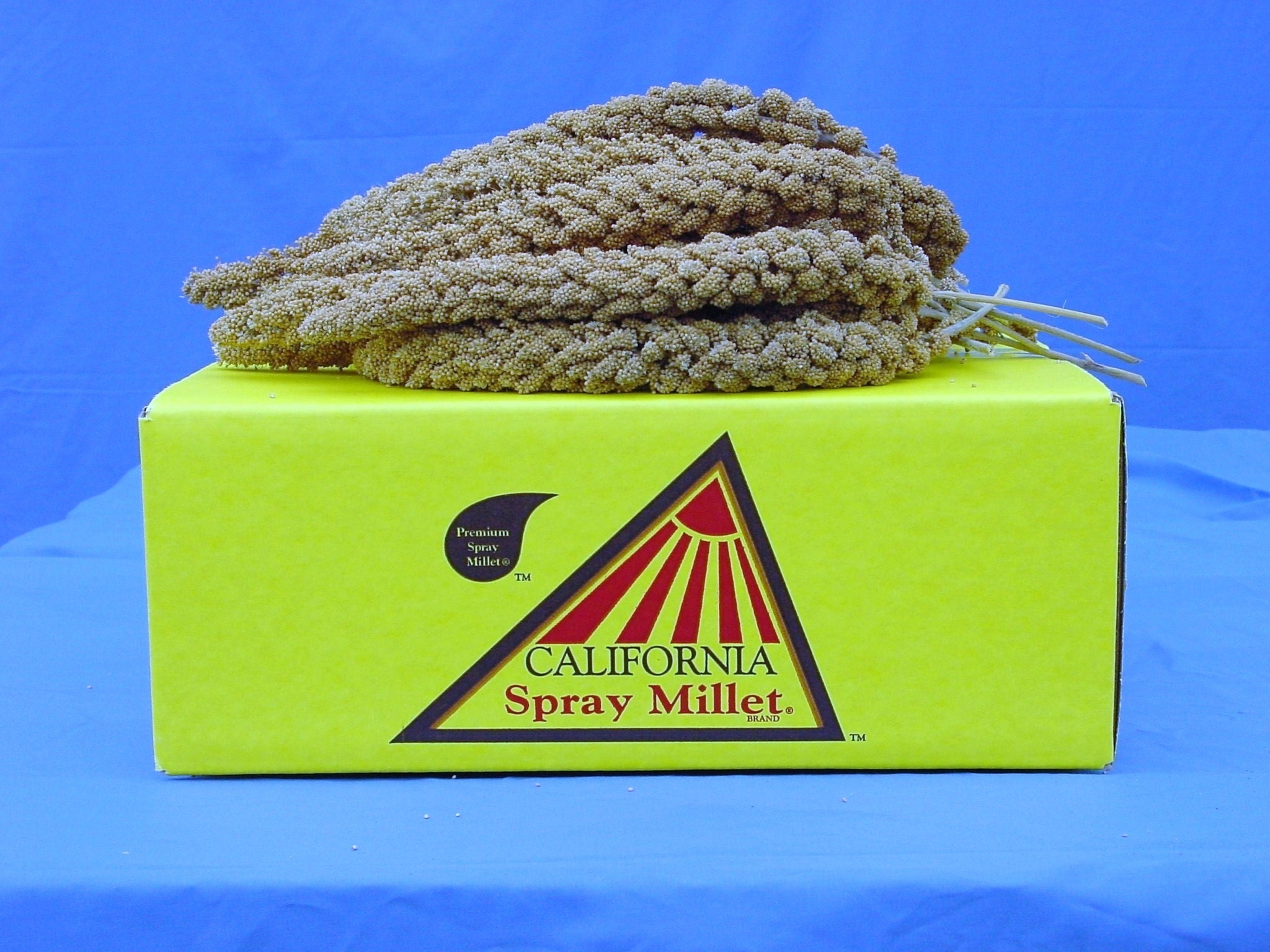 Californian Spray Millet - 1lb