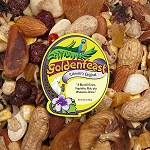 Goldenfeast - Schmitts's Original - 25oz