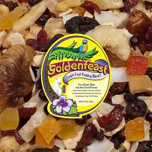 Goldenfeast - Tropical Fruit Pudding - 22oz